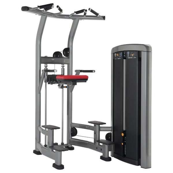 Life Fitness Insignia Series Assisted Dip Chin